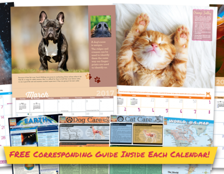 Study All Year with Our New Calendars